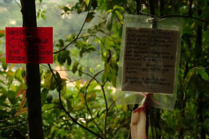 dangdiren-jungle-trail-9-notice