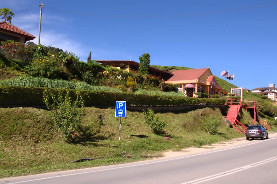 dangdiren cameron valley tea plantation kuala terla view