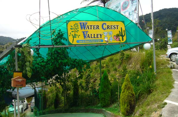 dangdiren cameron highlands water crest