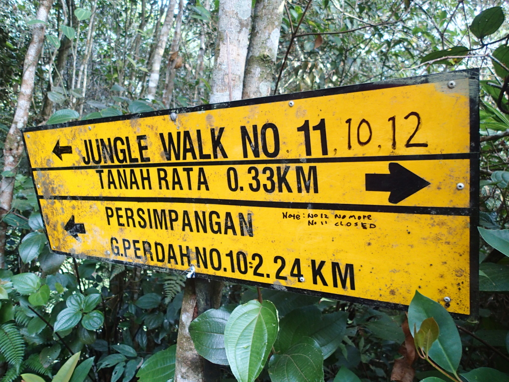 dangdiren gunung perdah
