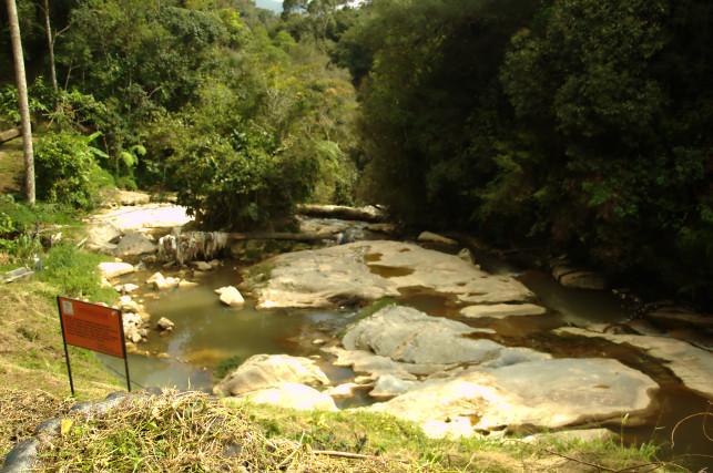 dangdiren robinson river