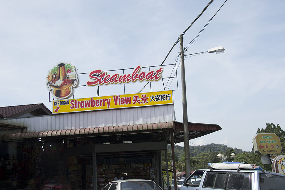 dangdiren-cameron-highlands-restoran-strawberry-view