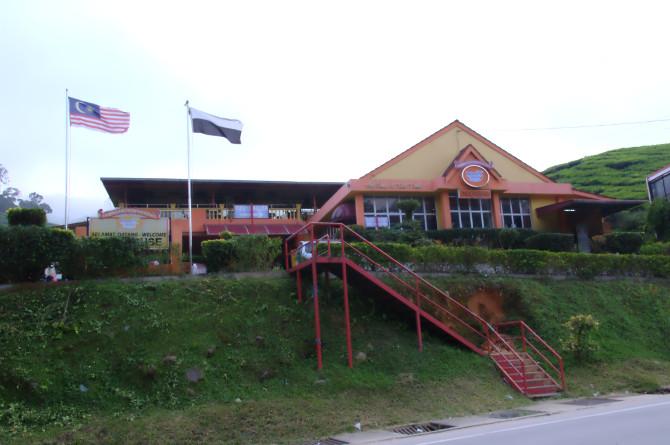 dangdiren cameron valley tea plantation kuala terla