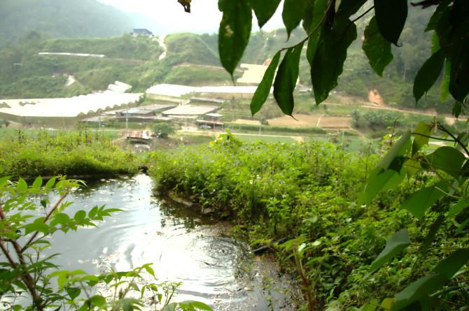 dangdiren-jungle-trail-9-water-source